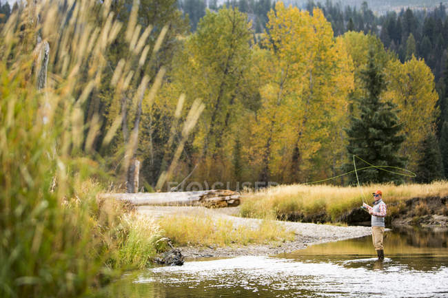 Pêche de mouche d'homme sur la rivière contre la forêt d'automne — Photo de stock