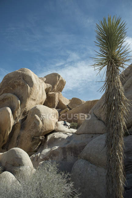 Distant view of woman sitting on large rock formation in Joshua Tree National Park, California, USA — Foto stock