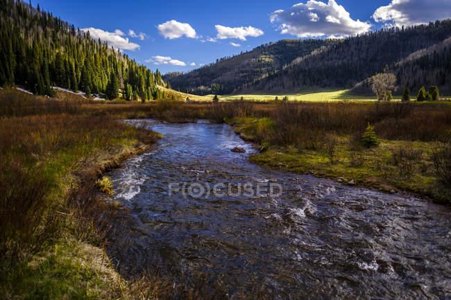 Mirando a este tenedor de Hermosa Cala cerca de Durango, Colorado, Usa - foto de stock