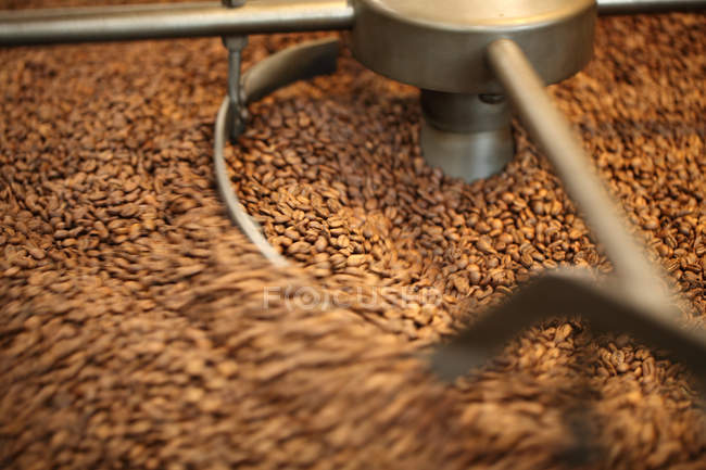 Lots of brown coffee beans in roaster, Oakland, California, USA — Stock Photo