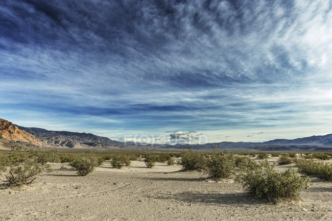 Belas paisagens naturais do deserto com arbustos, vale de solução salina, morte Valley National Park, Califórnia, EUA — Fotografia de Stock