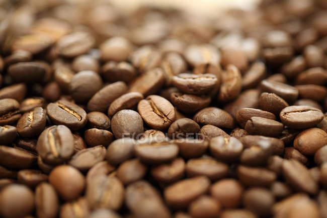 Макро постріл коричневий смажених кавових зерен — стокове фото