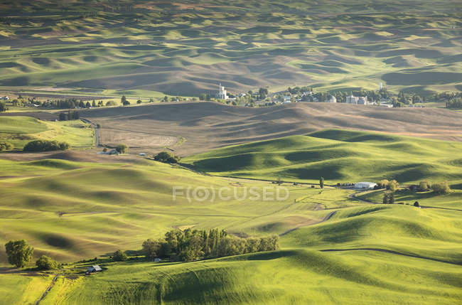 Scenic view of rolling hills in Palouse region, Garfield, Washington State, USA — Stock Photo