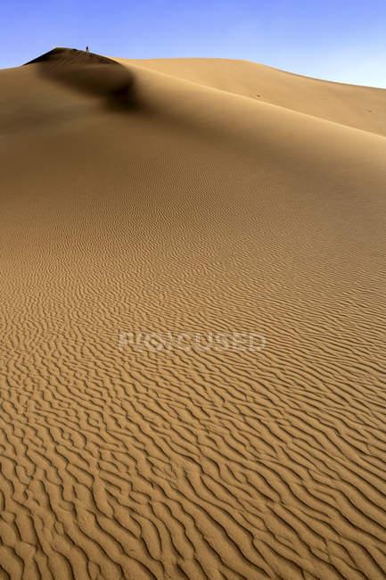 Шебби дюнами Эрг на рассвете, пустыня Сахара вблизи в Мерзуге, Марокко, Северная Африка — стоковое фото