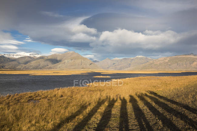 Long shadows of people raising their hands projected on yellow grass with mountains and clouds — Stock Photo