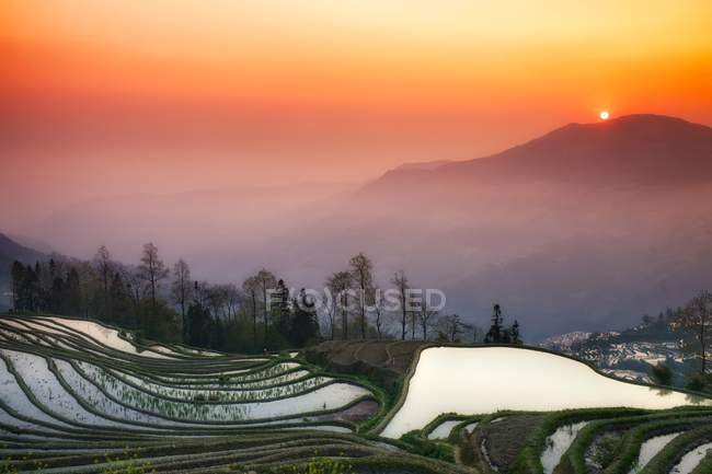 Scenic view of beautiful sunrise over rice terraces and mountain — Stock Photo
