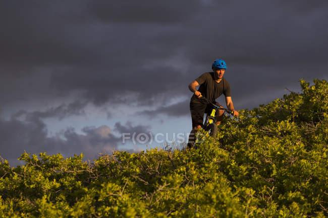 Чоловік гірський велосипед на стежці з чагарниками — стокове фото