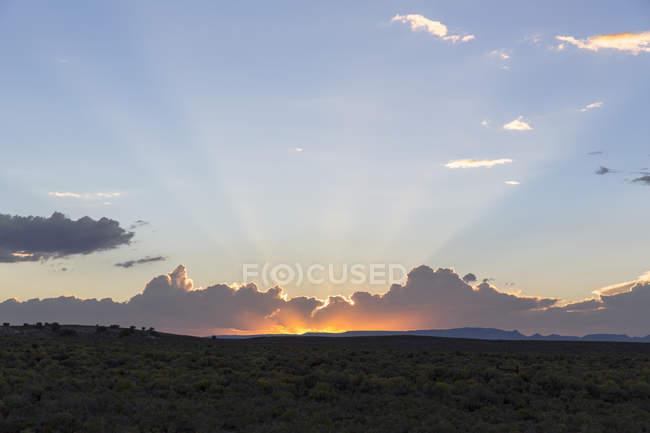 Пейзаж с закатом над пустыней, Elko, Невада, США — стоковое фото