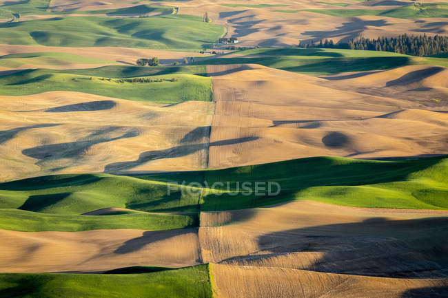 Malerische Aussicht auf die sanften Hügel in Palouse Region, Garfield, Washington State, Usa — Stockfoto