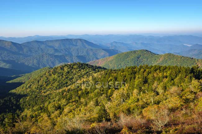 Vereinigte staaten, north carolina, jackson county. Blauer Grat Berge aus Bärengrat Lücke, blauer Grat Park — Stockfoto