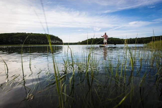 Paddle do homem ao lado das costas gramíneos — Fotografia de Stock