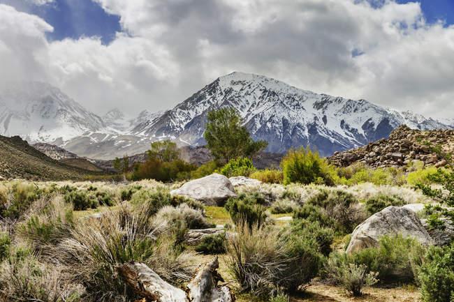 Красивые природные пейзажи с пустынь и заснеженные горы Сьерра-Невада с Пахта, епископ, Калифорния, США — стоковое фото