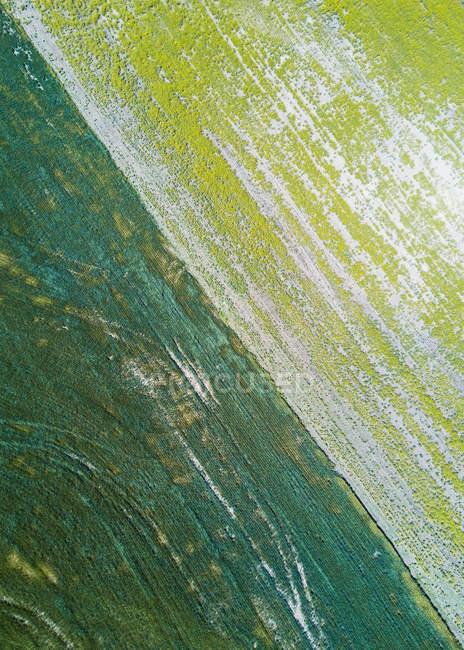 Aerial view of landscape, Pullman, Palouse, Washington State, USA — Stock Photo