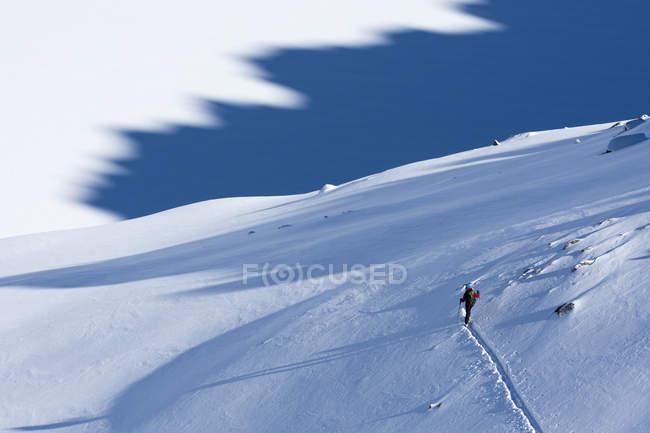 Frau Skitouren über Ophir Pass, San Juan National Forest, Silverton, Colorado, Usa — Stockfoto