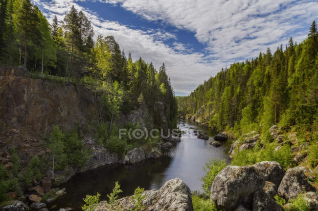 Beautiful natural scenery with cliff, river and forest, Utanede, Jamtland, Sweden — Stock Photo