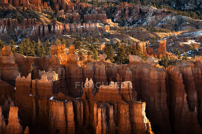 Scenic view of rocky hoodoos and trees — Stock Photo