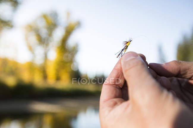 Lure di pesca a Mosca di uomo della holding — Foto stock