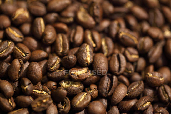 Макро постріл постріл коричневий щойно смажених кавових зерен — стокове фото