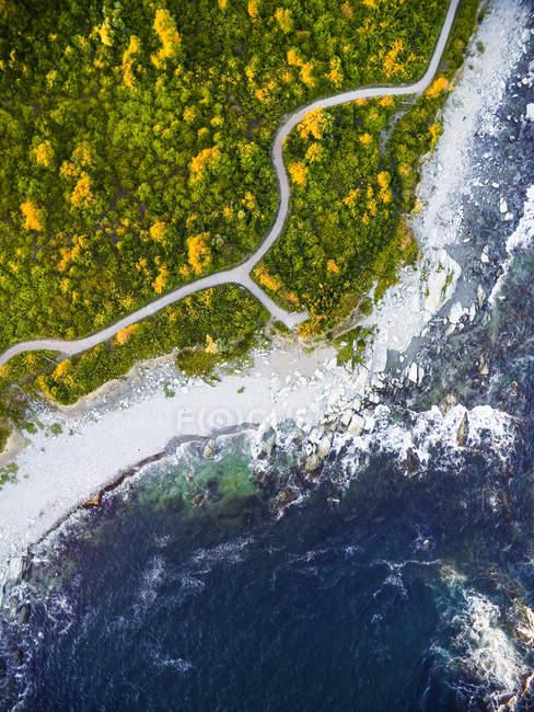 Vista aérea do zangão costa rochosa e trilha em Rhode Island — Fotografia de Stock