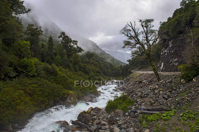 River running next to Carretera Austral, Los Lagos Region, Chile — Stock Photo