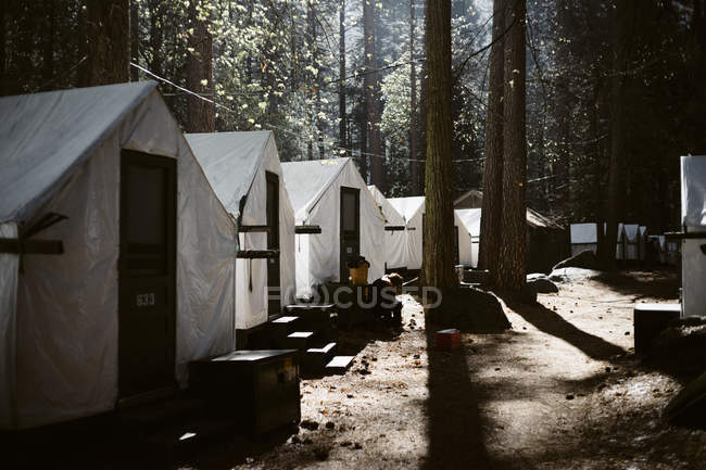 California tent cabins forest house by envelope a d for Curry village cabins yosemite