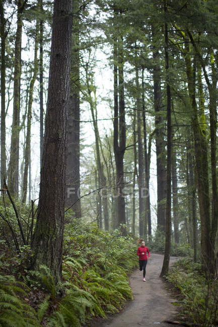 Front view of woman running on trail in forest — Stock Photo