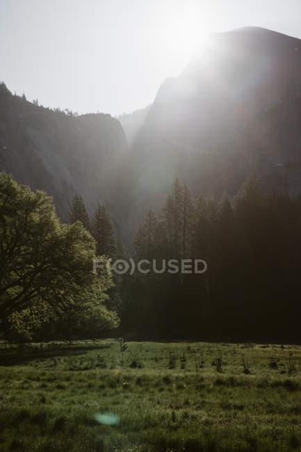 Parc national d'Yosemite — Photo de stock