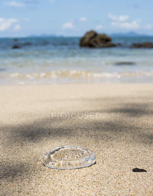 Beached jellyfish on sand on the island of Koh Jum, Thailand — Stock Photo