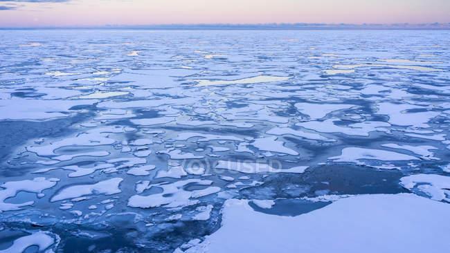 Ice Pack a Spitsbergen con un cielo rosa sullo sfondo — Foto stock