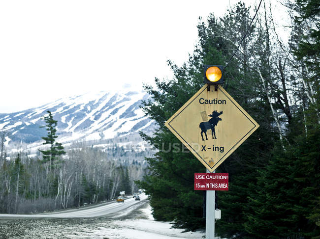 Moose crossing sign at Sugarloaf mountain access road — Stock Photo