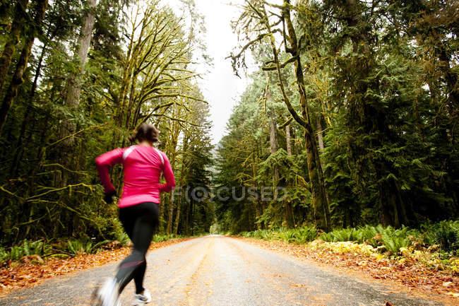 Спортивну дорослу жінку біг на дорозі через лісі біля озера Півмісяця, Вашингтон. — стокове фото
