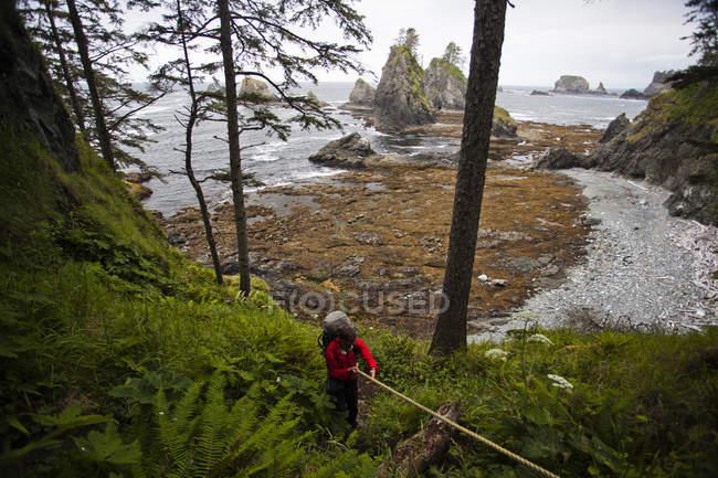 Uomo che per mezzo della corda per aiutare tirando su ripidi pendii durante le escursioni sulla costa del Parco nazionale di Olympic, Washington — Foto stock