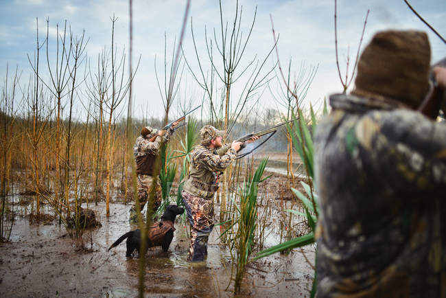 Varios cazadores de patos disparar escopetas en patos en Alabama Central - foto de stock