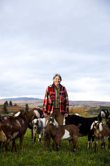 Feminino agricultor no campo, ao nascer do sol, rodeado por cabras — Fotografia de Stock