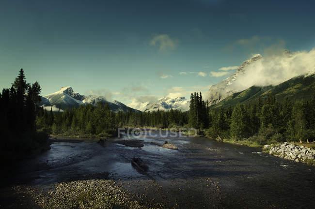 Floresta e Rio com montanhas cobertas de neve e céu azul — Fotografia de Stock