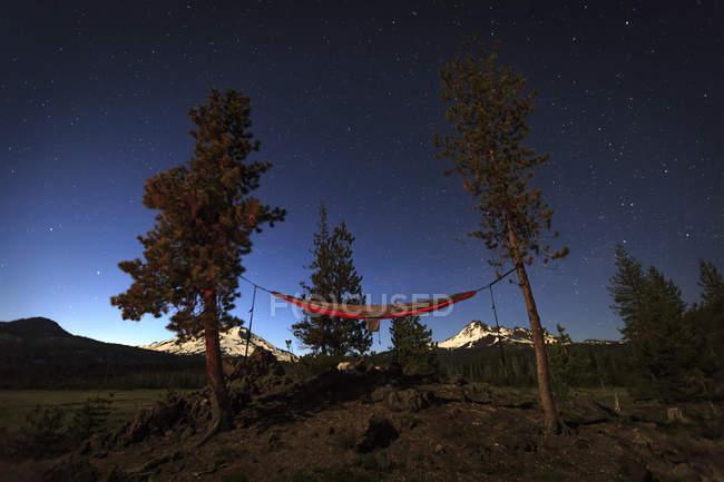 Гамак, настроить на деревьях с звездного неба ночью — стоковое фото