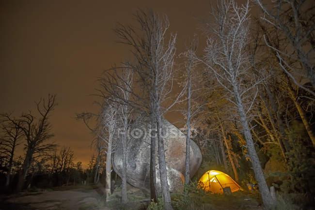 Tenda brilhante, situado ao lado de grande pedregulho na floresta nua — Fotografia de Stock