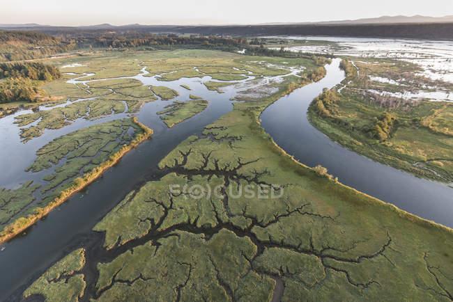 Vista aerea del delta del fiume con la bassa marea — Foto stock