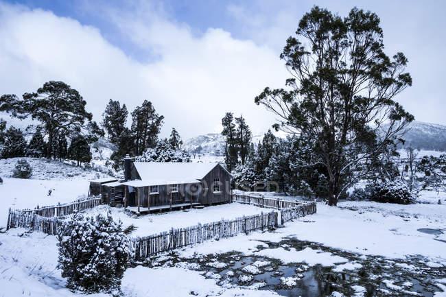 Огороженный хижина с деревьями в снежный пейзаж — стоковое фото
