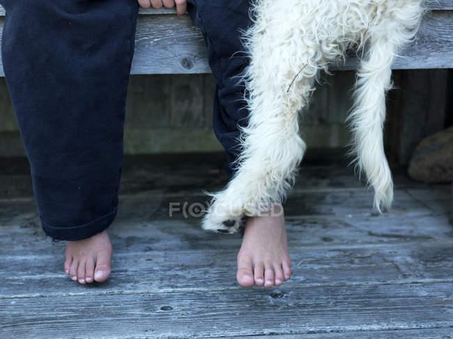 Les pieds nus de garçon et de la patte de chien — Photo de stock