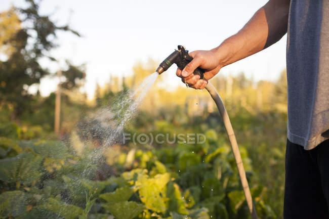 Сад водопостачання людини у форті Ленглі — стокове фото