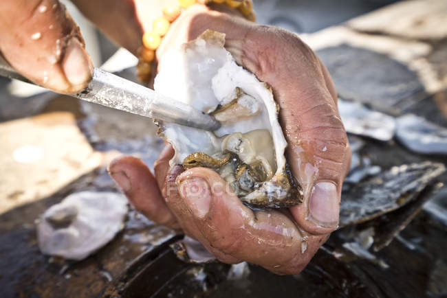 Close-up of hands shucking oyster, selective focus — Stock Photo