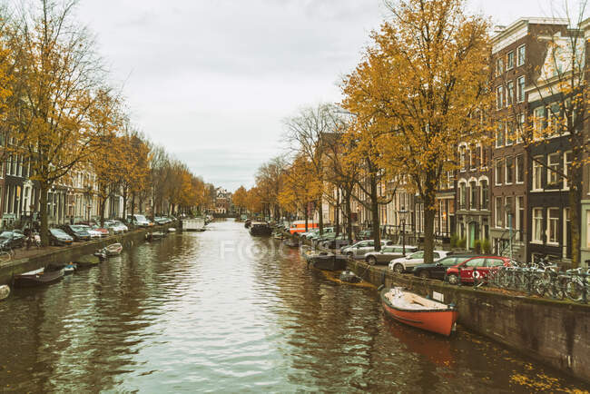 Beautiful Herengracht and boats in city on  background - foto de stock