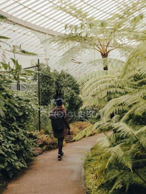 Donna vagando attraverso Kibble Palace Giardini Botanici — Foto stock