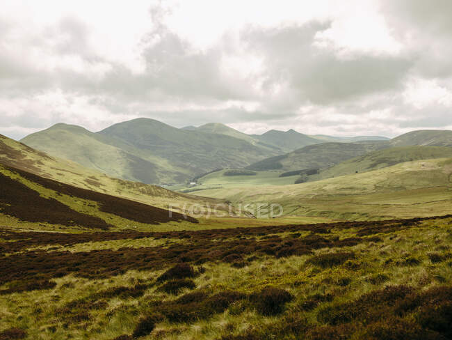 Rolling hills in Scottish countryside — Stock Photo