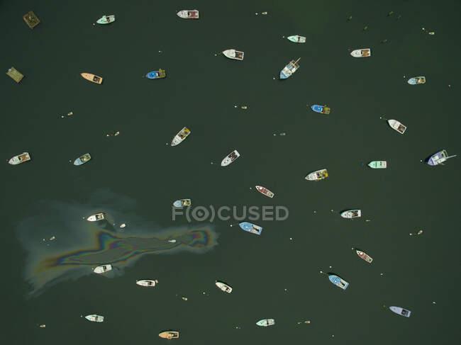 Лобстерські човни у гавані Мен з верхів