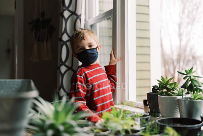 Lindo chico usando mascarilla en casa - foto de stock