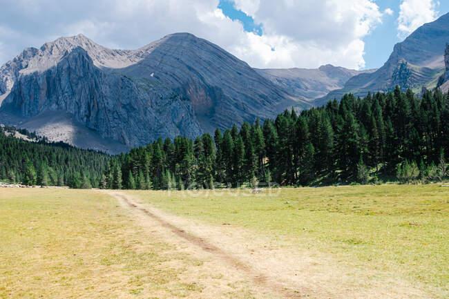 Sentier de sable à travers une plaine sèche conduit à une forêt de pins et de montagnes étonnantes à l'arrière-plan. Personne ne marche sur ce sentier alors que certains nuages pourraient commencer à pleuvoir. Photo horizontale. — Photo de stock