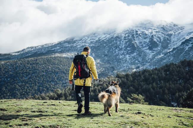 Joven con chaqueta amarilla y mochila juega con el perro pastor alemán en las montañas. - foto de stock