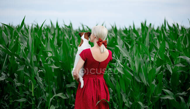 Blonde lady in beautiful red dress with dog in cornfield — Stock Photo